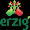 erzig.logo